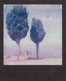 polaroid.-paysage.21