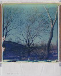 polaroid.-paysage.28